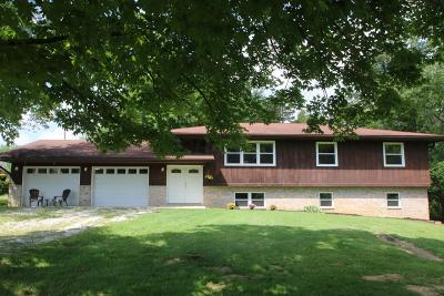 Lewis Center Single Family Home For Sale: 3770 S Old State Road