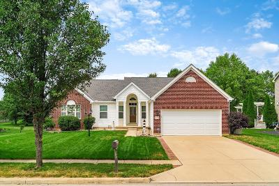 Single Family Home For Sale: 6500 Hilliard Drive