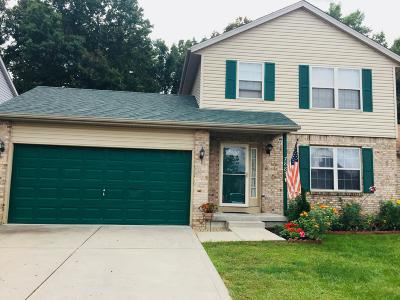 Blacklick Single Family Home Contingent Finance And Inspect: 7885 Fairfax Loop Drive