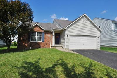 Single Family Home For Sale: 7966 Waggoner Run Drive