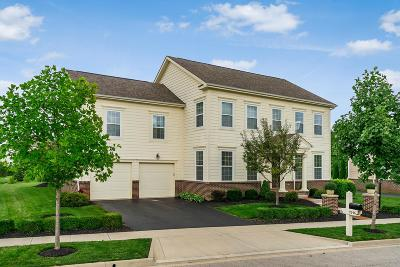 Dublin Single Family Home Contingent Finance And Inspect: 9246 Golden Rose Way
