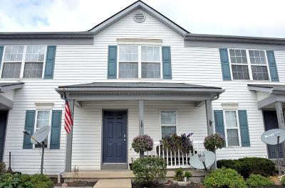 Union County Condo Contingent Finance And Inspect: 1074 Watkins Glen Court #1074