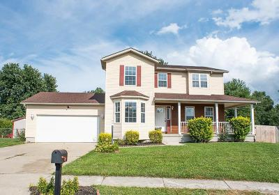 Hebron Single Family Home Contingent Finance And Inspect: 210 Christopher Court