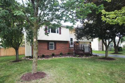 Union County Single Family Home Contingent Finance And Inspect: 17 Maple Street