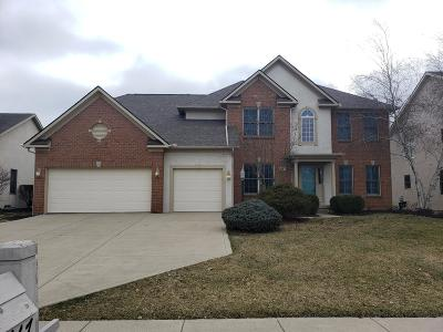 Westerville Single Family Home For Sale: 6467 Spring Run Drive