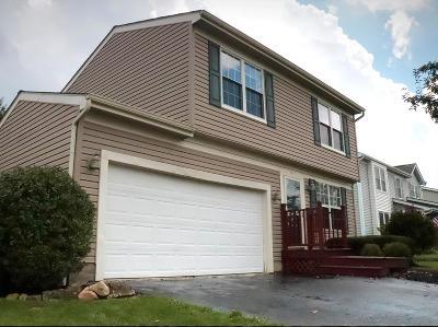 Hilliard Single Family Home For Sale: 5455 Gillette Avenue