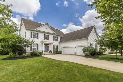 Dublin Single Family Home For Sale: 5964 Tarrin Court