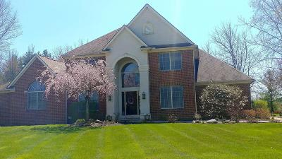 Blacklick Single Family Home For Sale: 8373 Creek Hollow Road