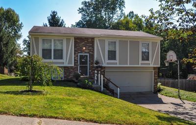 Heath Single Family Home For Sale: 1199 Briar Hill Road