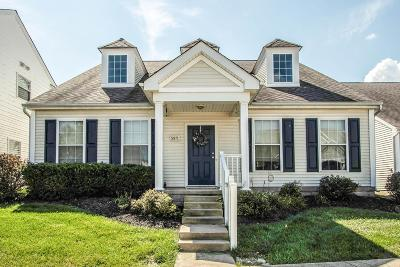 Dublin Single Family Home For Sale: 5971 Meehan Road