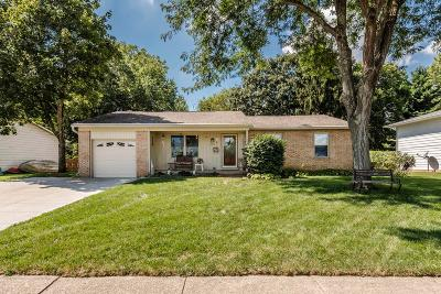 Westerville Single Family Home For Sale: 403 Delaware Drive