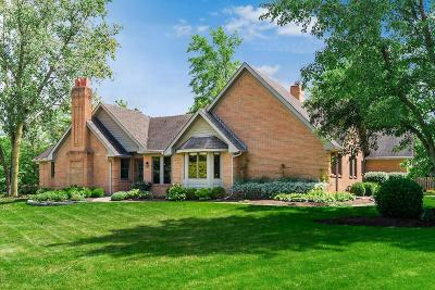 Dublin Single Family Home Contingent Finance And Inspect: 8674 Gavinton Court