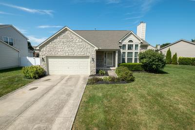 Reynoldsburg Single Family Home For Sale: 909 Sorohan Street