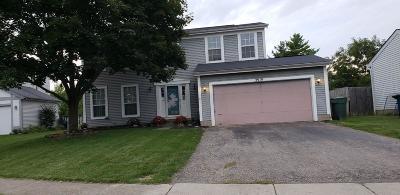 Hilliard Single Family Home For Sale: 2919 Culver Drive
