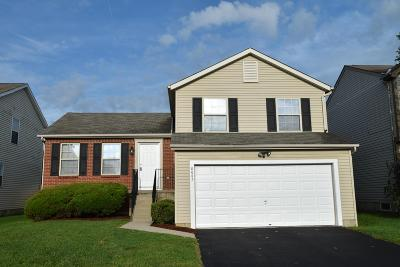 Blacklick Single Family Home Contingent Finance And Inspect: 8047 Crete Lane