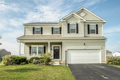 Johnstown Single Family Home For Sale: 223 Weeping Willow Run Drive