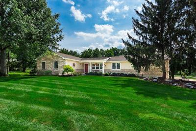 Westerville Single Family Home For Sale: 8370 Manitou Drive