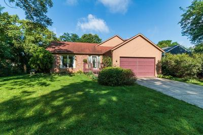 Westerville Single Family Home For Sale: 145 Spring Valley Road