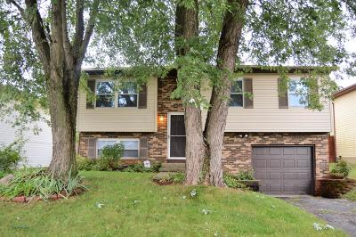 Reynoldsburg Single Family Home Contingent Finance And Inspect: 6808 Centennial Drive