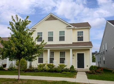 Dublin Single Family Home For Sale: 5836 Trail Creek Drive