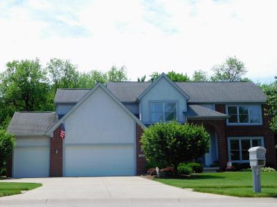 Pickerington Single Family Home For Sale: 13200 Brandon Circle