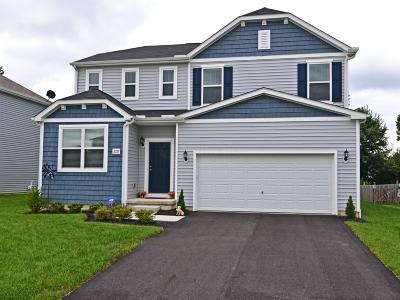 Grove City Single Family Home For Sale: 2227 Holiday Valley Drive