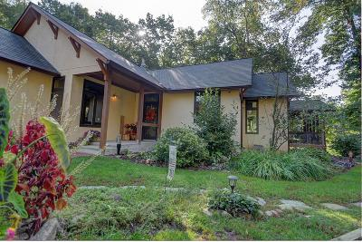 Delaware Single Family Home For Sale: 6166 N Old State Road