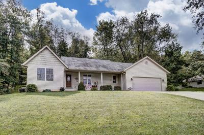 Newark Single Family Home For Sale: 1411 Meggin Melanne Lane