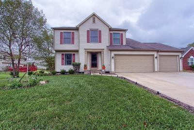 Canal Winchester Single Family Home For Sale: 6490 Hilliard Drive