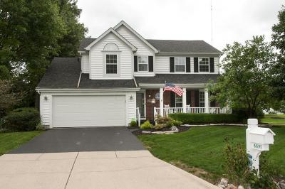 Westerville Single Family Home For Sale: 6691 Hermitage Drive