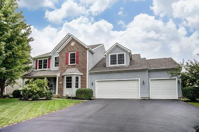 Hilliard Single Family Home For Sale: 3242 Walkerview Drive