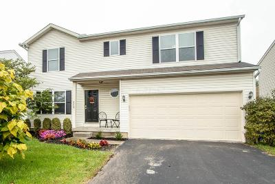 Single Family Home For Sale: 509 Dover Pond Drive