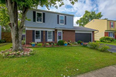 Single Family Home For Sale: 8471 Blue Lake Avenue