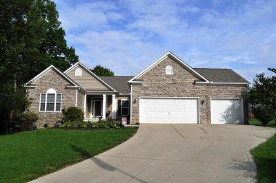 Lewis Center Single Family Home Contingent Finance And Inspect: 2861 Tweed Court
