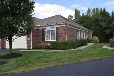 Westerville Condo Contingent Finance And Inspect: 6524 Portrait Circle #1204