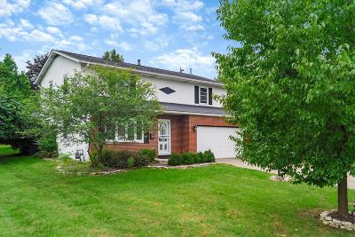 Single Family Home For Sale: 1801 Kenview Road
