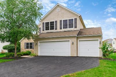 Hilliard Single Family Home For Sale: 4697 Nadine Park Drive