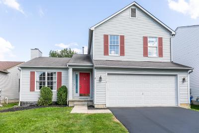 Hilliard Single Family Home For Sale: 2216 Yagger Bay Drive