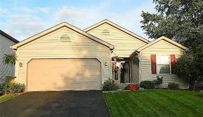 Blacklick Single Family Home For Sale: 1126 Moneca Street