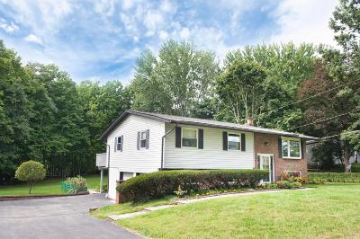 Delaware Single Family Home For Sale: 7380 S Section Line Road