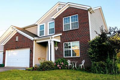 Single Family Home For Sale: 184 Mannaseh Drive E