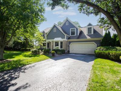 Dublin Single Family Home For Sale: 8429 Davington Drive
