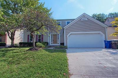 Westerville Single Family Home For Sale: 7952 Hightree Drive