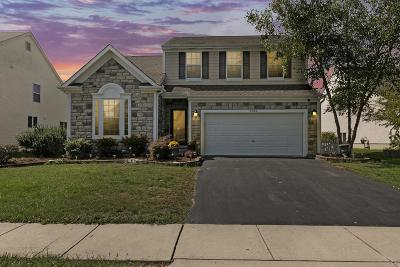 Hilliard Single Family Home For Sale: 3099 Gilridge Drive