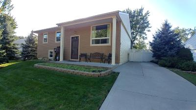 Single Family Home For Sale: 325 Empire Drive