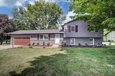 Delaware Single Family Home For Sale: 900 Bunty Station Road