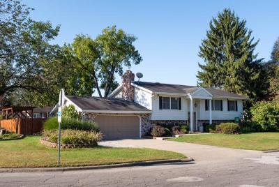 Newark Single Family Home For Sale: 757 Plymouth Place