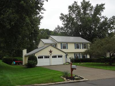 Newark Single Family Home For Sale: 1673 Londondale