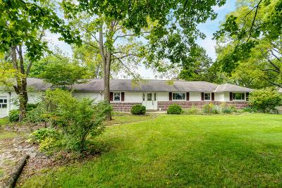 Delaware Single Family Home For Sale: 7258 S Section Line Road