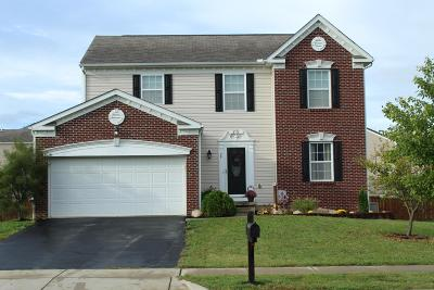 Ashville Single Family Home Contingent Finance And Inspect: 29 Hawthorne Drive